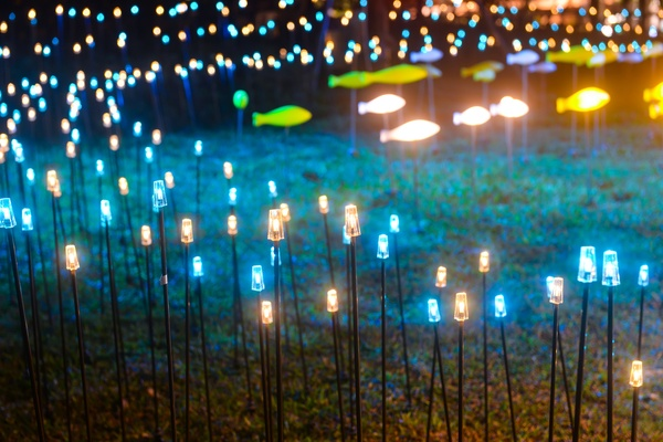Decorative led lights on the park lawn