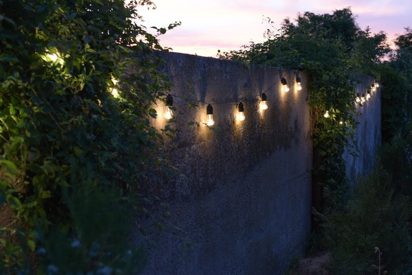 String lights hanging from trees in private garden with fence and greenery