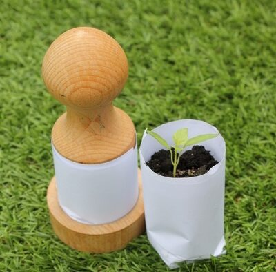Home made paper plant pots