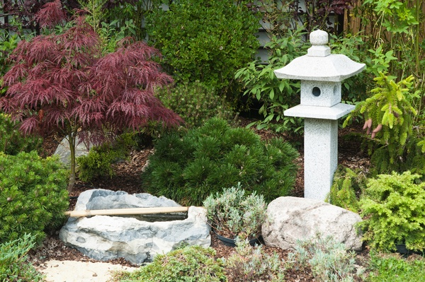 Garden with rockery and Japanese Maple tree