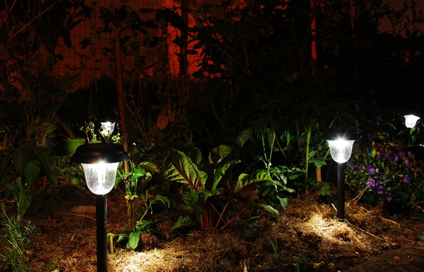 Garden Solar Lights in the Dark