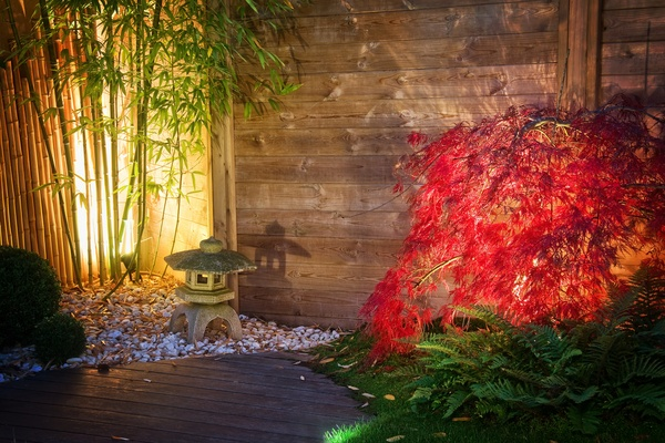 Japanese zen garden lightened by spot lights at night