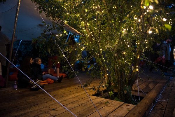 People relaxing in a natural area by a tree decorated with outdoor fairy lights
