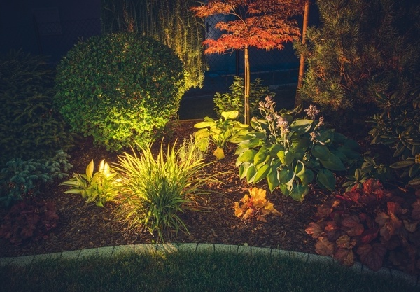 Garden Ambient Lighting with spot lights in a bed