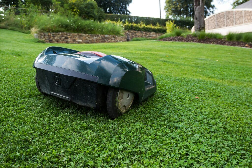 A robotic lawnmower in a garden